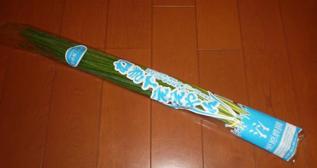 2011_03280002