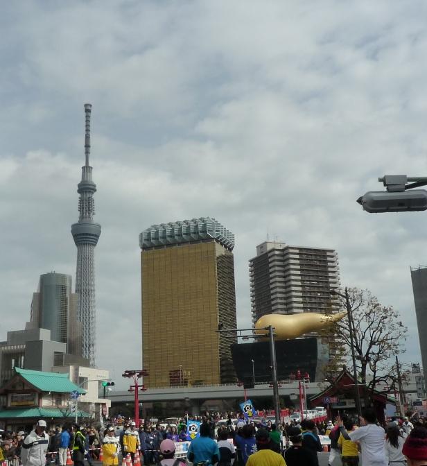 2012_02260062