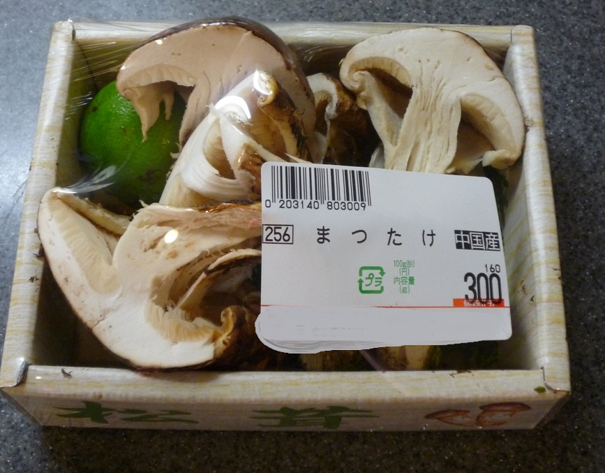 2012_08190037